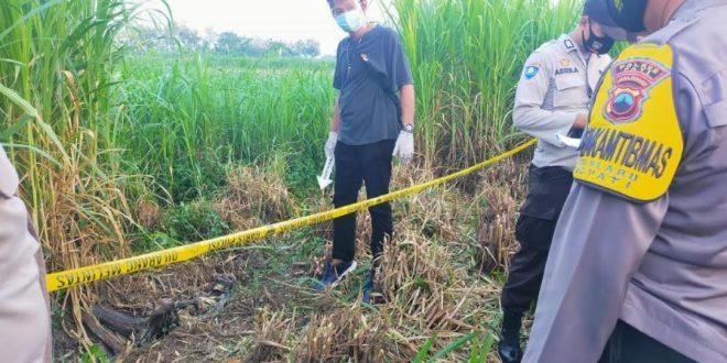 Hilang 2,5 Bulan, Jenazah Parsini Ditemukan Tinggal Kerangka
